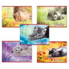 Альбом для рисования, 20 л., HATBER, обложка мелованный картон, 100 г/<wbr/>м<sup>2</sup>, «Котята» (5 видов), 20А4В