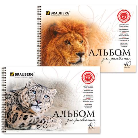 Альбом для рисования, 40 л., BRAUBERG (БРАУБЕРГ), гребень, обложка мелованный картон, 110 г/<wbr/>м<sup>2</sup>, «Благородные кошки», 2 вида