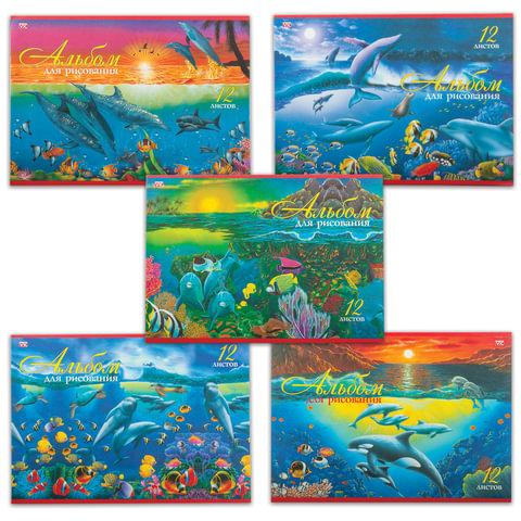 Альбом для рисования, 12 л., HATBER VK, обложка офсет, 100 г/<wbr/>м<sup>2</sup>, «Дельфины» (5 видов)