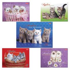 Альбом для рисования, 24 л., HATBER, спираль, обложка мелованный картон, 100 г/<wbr/>м<sup>2</sup>, «Милые котята» (5 видов), 24А4Всп