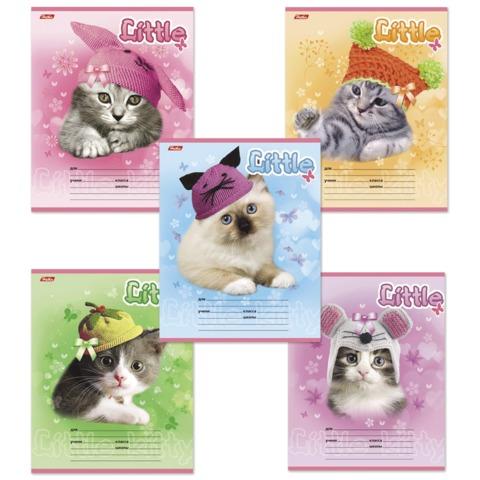Тетрадь 12 л., HATBER, клетка, обложка мелованный картон, «Котята в шапочках»