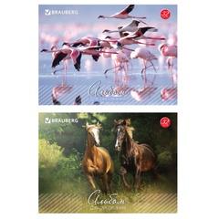 Альбом для рисования, 32 л., BRAUBERG, обложка мелованный картон, «Живая природа», 2 вида