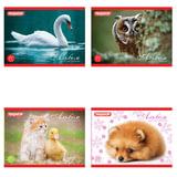 Альбом для рисования, А5, 20 л., ПИФАГОР, обложка офсет, 100 г/<wbr/>м<sup>2</sup>, «Животные», 4 вида