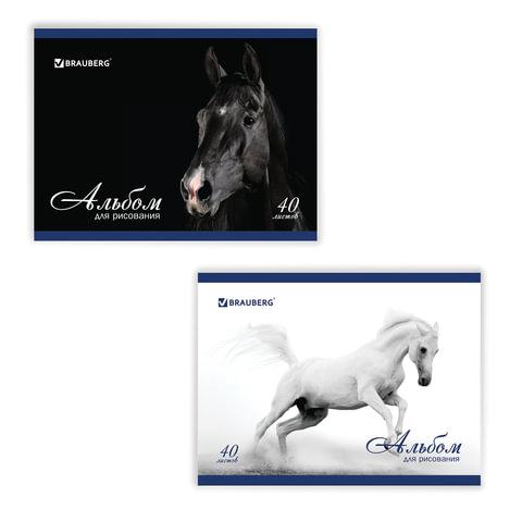 Альбом для рисования, 40 л., BRAUBERG (БРАУБЕРГ), обложка мелованный картон, 100 г/<wbr/>м<sup>2</sup>, «Благородные кони», 2 вида