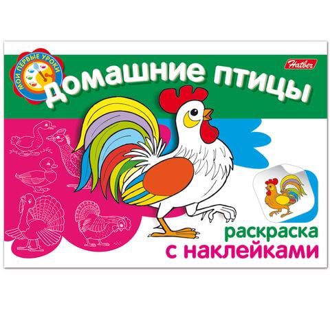 """Книжка-раскраска А5, 4 л., HATBER с наклейками, Мои первые уроки, """"Домашние птицы"""", 4Р5н 05825"""