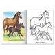 Книжка-раскраска А5, 8 л., HATBER, Первые уроки, «Домашние животные»