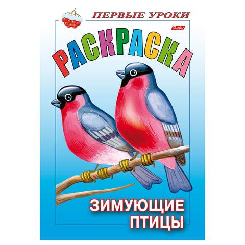Книжка-раскраска А5, 8 л., HATBER, Первые уроки, «Зимующие птицы», 8Рц5 10355