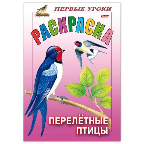 Книжка-раскраска А5, 8 л., HATBER, Первые уроки, «Перелётные птицы»