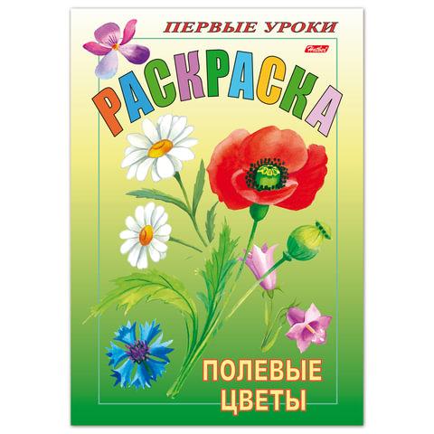 Книжка-раскраска А5, 8 л., HATBER, Первые уроки, «Полевые цветы»