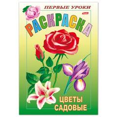 Книжка-раскраска А5, 8 л., HATBER, Первые уроки, «Садовые цветы», 8Рц5 03070