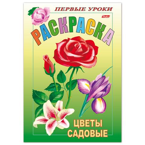 """Книжка-раскраска А5, 8 л., HATBER, Первые уроки, """"Садовые цветы"""", 8Рц5 03070"""