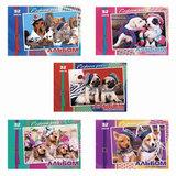 Альбом для рисования, 32 л., HATBER, обложка мелованный картон, 100 г/<wbr/>м<sup>2</sup>, «Fashion pets», 32А4В
