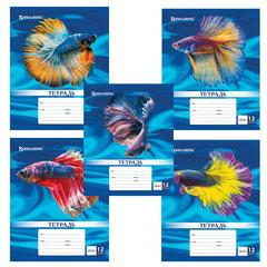 Тетрадь 12 листов, клетка, обложка мелованный картон, блок офсет белый, «Magic Fish», BRAUBERG
