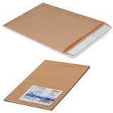 Конверт-пакет В4 плоский, комплект 25 шт., 250×353 мм, отрывная полоса, крафт-бумага, коричневый, на 140 листов