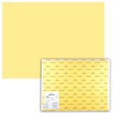 Бумага (картон) CANSON «Iris Vivaldi», А2+, 500×650 мм, 240 г/<wbr/>м<sup>2</sup>, 2-сторонняя, светло-желтая