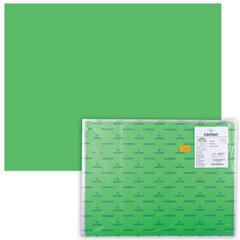 Бумага (картон) CANSON «Iris Vivaldi», А2+, 500×650 мм, 240 г/<wbr/>м<sup>2</sup>, 2-сторонняя, зеленая