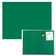 Бумага (картон) CANSON «Iris Vivaldi», А2+, 500×650 мм, 240 г/<wbr/>м<sup>2</sup>, 2-сторонняя, темно-зеленая