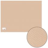������ ��� ������� CANSON «Mi-Teintes» («������»),�2+, 500×650 ��, 160 �/<wbr/>�, 2-����., �����.-�������