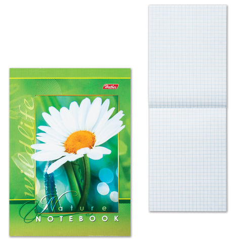 Блокнот А6, 48 л., скоба, мелованный картон обложка, HATBER, «Живые моменты», 124×144 мм