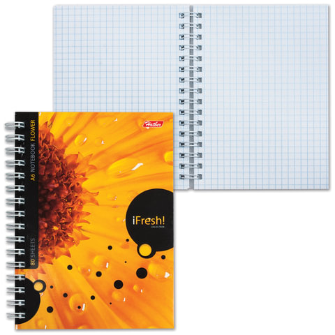 Записная книжка, А6, 80 л., гребень, обложка мелованный картон, HATBER, «iFRESH», 105×145 мм, 80ЗК6B1гр