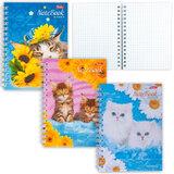 Записная книжка, А6, 80 л., гребень, обложка мелованный картон, HATBER, «Котята», 105×145 мм