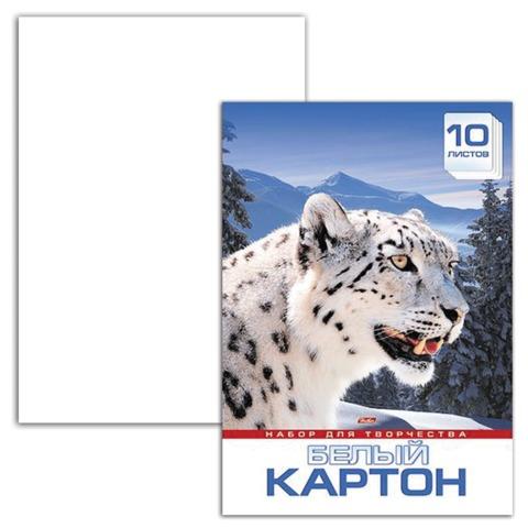 Белый картон, А3, мелованный, 10 листов, в папке, HATBER, «Снежный барс», 297×420 мм