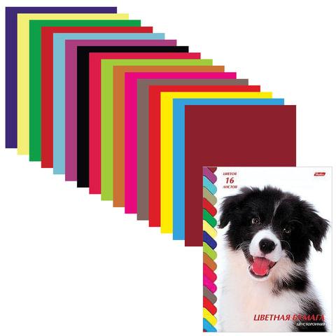 Цветная бумага, А4, двухсторонняя, 16 листов, 16 цветов, HATBER VK, «Щенок», 195×270 мм, 16Бц4 08053