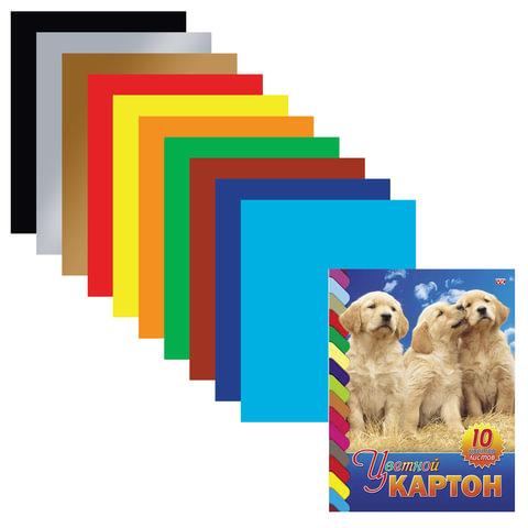 Цветной картон, А4, мелованный, склейка, 10 листов, 10 цветов, HATBER VK, «Щенки», 195×275 мм