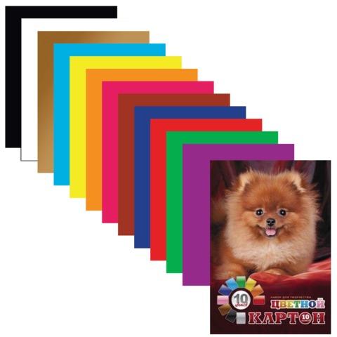 """Цветной картон, А4, мелованный, 10 листов, 10 цветов, HATBER, """"Пушистый щенок"""", 10Кц4 10665"""
