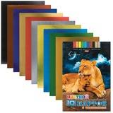 Цветной картон, А4, фольгинированный, с тиснением, 10 листов, 10 цветов, HATBER, «Львы», 195×280 мм