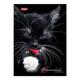 Блокнот 7БЦ, А6, 96 л., обложка ламинированная, тонированный блок, HATBER, «Милый котик»