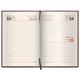 Ежедневник BRAUBERG (БРАУБЕРГ) 2017, А5, 138×213 мм, «Iguana» («Игуана»), «змеиная кожа», 168 л., темно.корич.,крем.блок,зол.срез