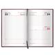 Ежедневник BRAUBERG (БРАУБЕРГ) датированный 2017, А5, 138×213 мм, «Profile» («Профайл»), «фактурная кожа», 168 л., коричн.
