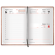 Ежедневник BRAUBERG (БРАУБЕРГ) датированный 2017, А5, 138×213 мм, «Rainbow» («Рейнбоу»), «гладкая кожа», 168 л., оранжевый