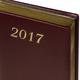 ���������� BRAUBERG (��������) 2017, �6, 100×150 ��, «Iguana» («������»), «������� ����», 168 �., �.-�����., ����.����, ���. ����