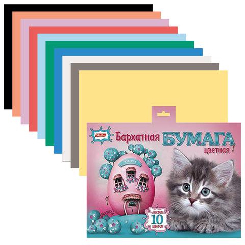 "Цветная бумага, А5, бархатная, 10 листов, 10 цветов, HATBER, ""Котенок"", 165х220 мм, 10Ббх5 06796"