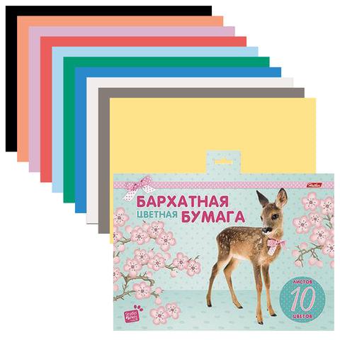 Цветная бумага, А5, бархатная, 10 листов, 10 цветов, HATBER, «Олененок» (MYRNA), 165×220 мм
