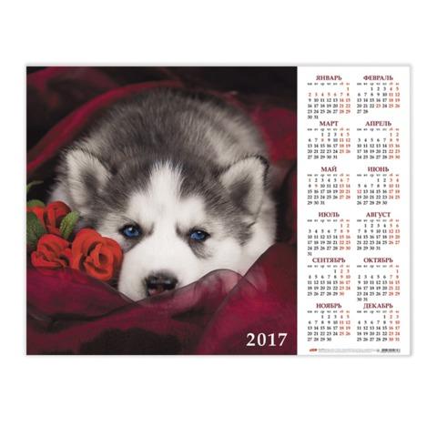 Календарь А2 на 2017 г., HATBER, 45×60 см, горизонтальный, с крупной сеткой, «Щенок»