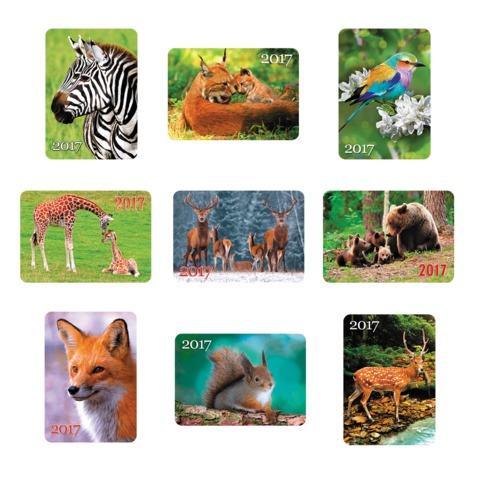 Календарь карманный на 2017 г., HATBER, 7×10 см, лакированный, «В мире животных»
