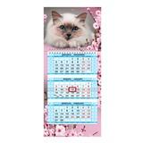 Календарь квартальный на 2017 г., HATBER, Мини, 3-х блочный, на 1-м гребне, «Милый котик»