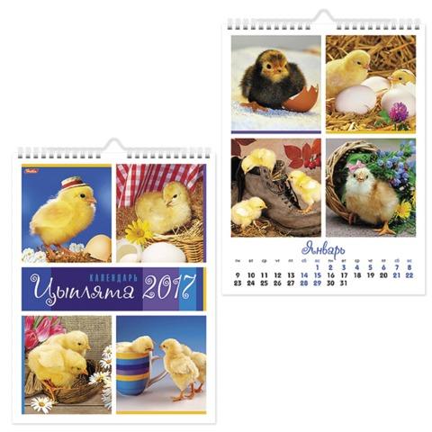 Календарь на гребне с ригелем на 2017 г., 22×30 см, HATBER, 6 л., «Цыплята»