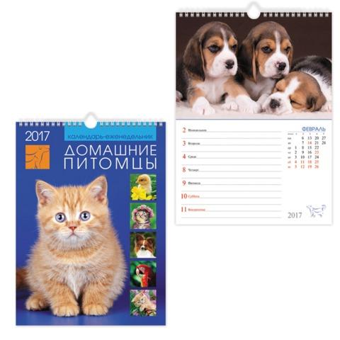 Календарь на гребне с ригелем на 2017 г., 24×32 см, HATBER, 28 л., «Домашние питомцы», 56Кнп4гр 15027