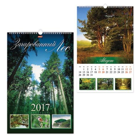 Календарь на гребне с ригелем на 2017 г., 30×45 см, HATBER, 6 л., «Зачарованный лес»
