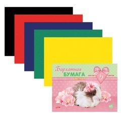 Цветная бумага, А5, бархатная, 5 листов, 5 цветов, HATBER, «Пушистики» (MYRNA), 165×220 мм, 5Ббх5 13331