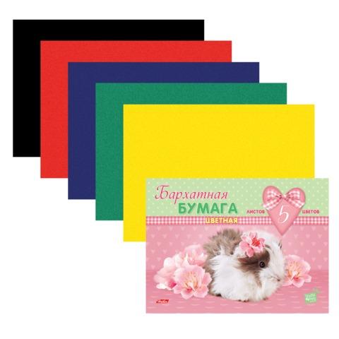 """Цветная бумага, А5, бархатная, 5 листов, 5 цветов, HATBER, """"Пушистики"""" (MYRNA), 165х220 мм, 5Ббх5 13331"""