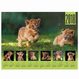 Календарь А2 на 2018 г., HATBER, 45×60 см, горизонтальный, «Львенок», Кл2 16841