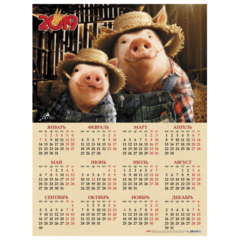 Прикольный календарь на 2019 год с картинками по месяцам, днем