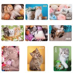 Календарь карманный на 2019 г., HATBER, 7×10 см, ламинированный, «Котята», Кк7