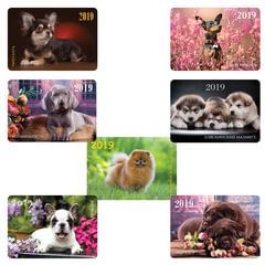 Календарь карманный на 2019 г., HATBER, 7×10 см, ламинированный, «Собаки — породы», Кк7