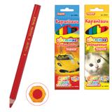 Карандаши цветные ПИФАГОР «Котята, Автомобили», 6 цветов, яркие цвета, утолщенные, заточенные